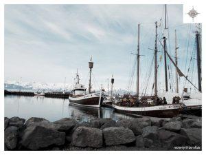 Whalewatching-Boote im  Hafen von Húsavík